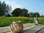 picnic table views