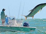 Championship fishing waters