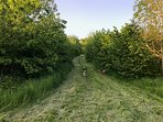 Woodland walks close by to be enjoyed with your four-legged friends