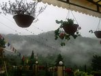 View from the cottage during monsoons
