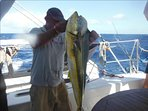 Pêche d'une daurade coryphèrne à bord du catamaran Croisyvoile.