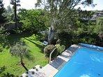 Vue de la terrasse (jardin et piscine)