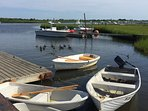 Visit the ducks at Hither Creek boat landing, (5 min walk).