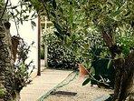 Giardino privato della casa