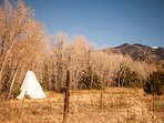 Glamping tipis with view of the mountains.