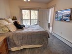master bedroom with private patio access.