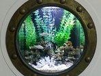 Porthole fish tank