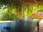 Ping-pong table in the terrace near the pool