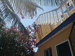Stairway to rooftop palapa