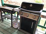 outdoor Griddle and Grill