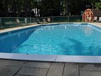 go for a swim in our large 20 x 40 ft pool