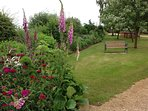 Early summer and the Roses, Foxgloves & Sweet Williams are in full bloom