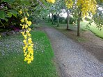 Guests who love mature gardens will also love strolling through 3 acres of magnificent gardens.