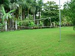 Volley Ball Net & Manicured Grounds