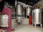 in the adega (winery)