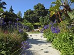 Gorgeous plants and gardens cover the grounds around Jameson Retreat.
