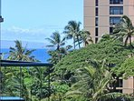 You can peek at the ocean from the lanai. If you want a view of the whole thing, just head down a couple floors and...