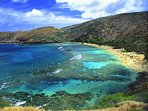 Walking distance to Koko famous Hanauma Bay