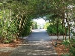 Take a stroll down the tree-lined walkways of Rosemary Beach.
