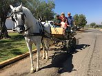 explore the local vineyard by horse and carriage.