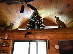 Coyotes in the loft in the Great-room