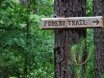 Several trails lead guests around the 80 acre property.  The Forest Trail is a 1 mile loop.