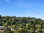 You'll be treated to great views of the Emerald City.