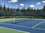 Pickle ball equipment is provided on courts adjacent to the home