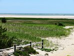 Little Beach - get a clamming permit and dig up your dinner - fresh clams- Cape Cod at it's best!! - 46 Little Beach...
