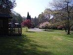 Pretty parkland on your doorstep