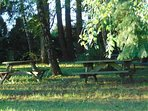 Have a picnic in our woods; perfect on a warm spring or summer day...