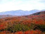 Fall Season Views from Horse'n Around