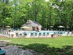 Chestnut Springs pool