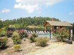 Legacy Mountain Pool