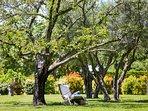 Ambiance Cézanne jardin