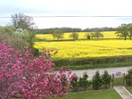 Enjoy the stunning views from the house or garden, and the many footpaths.