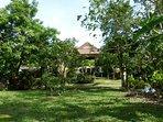 Garden + Frontview