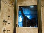 Wisconsin Dells Getaways Bathroom Second View #405