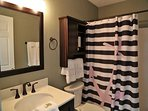 Downstairs bathroom - shower/tub combo