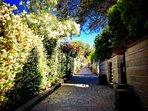 Vialetto Residenza Vecchia Mola Chigi con ingressi appartamenti con giardino