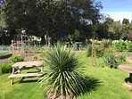 Community Garden at The Church next door - for the community and our guest to respectfully enjoy/use