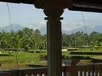 Jaw dropping mountain & rice paddy views
