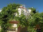 Grape Vines on Veranda with views of Bethlehem & Shepherds Fields