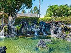 Welcome to The Shores at Waikoloa!