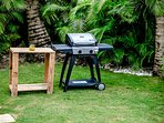 BBQ and Furniture