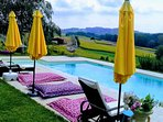 Villa Piemonte with private Saltwater Pool & Whirlpool in the wineyards