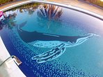 Custom tiled pool features mother whale pushing baby to surface for its first breath.