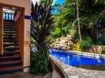 Garden entry welcomes you to pool, shower, undercover lounging,  second level stairs to main living.