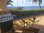 Gas barbeque with five burners and south Pacific.