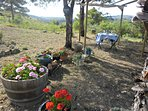 Private access with garden. Almond orchard, mountain and vineyard views.